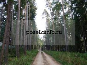 Поселок Прохоровский